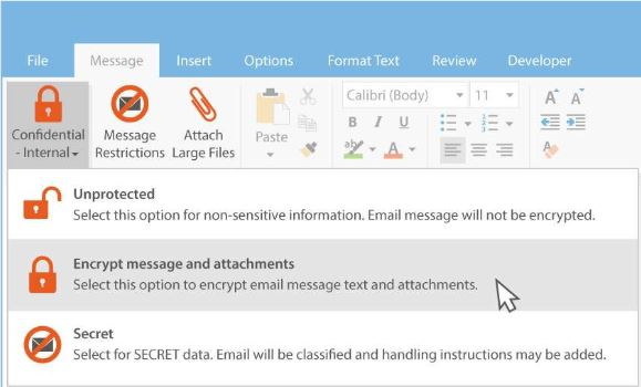 Egress encryption plugin in Outlook